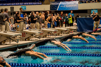 400-medley-relay-start- ncaa-dii-2015-1840