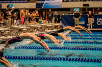 400-medley-relay-start- ncaa-dii-2015-1849