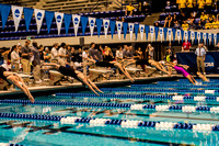 400-free-relay-start- ncaa-dii-2015-4628