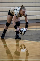 Lapel Volleyball 2016 0034