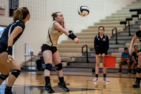 Lapel Volleyball 2016 0053