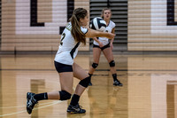 Lapel Volleyball 2014 0060