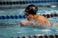Zionsville HS Swimming 2016 0044