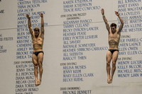 Hixon, M., Schmidt, D. USA Diving 2015 0230