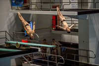 Hixon, M., Schmidt, D. USA Diving 2015 0111