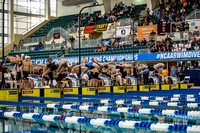 2016-ncaa-mens-swimming 0260
