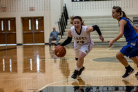 Lapel Girls BBall 2014 0139
