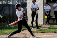 Lapel Softball 2017 0137