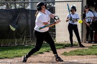 Lapel Softball 2017 0155