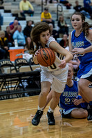 Lapel Girls BBall 2014 0022