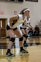 Lapel Volleyball 2014 0015