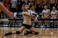Lapel HS Volleyball 2013  0064