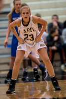 Lapel Girls BBall 2014 0184