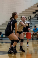 Lapel Volleyball 2016 0024