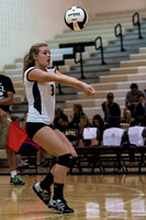 Lapel Volleyball 2014 0035
