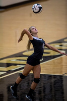 Lapel Volleyball 2014