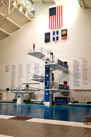 2008 Olympic Diving Trials