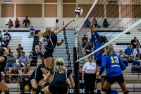 Lapel Volleyball 2016 0058