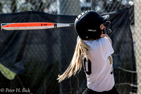 Lapel Softball 2017 0141