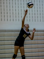 Lapel Volleyball 2017 0031