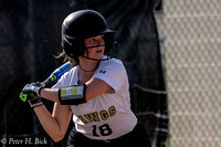 Lapel Softball 2017 0164