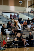 Lapel Volleyball 2014 0001