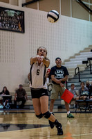 Lapel Volleyball 2014 0008